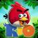 Angry Birds Rio Full Apk İndir