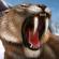 Carnivores: Ice Age Hileli Mod APK İndir
